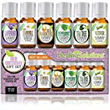 Birthday Gift for Her Set 100% Pure, Best Therapeutic Grade Essential Oil Kit – 6/10mL (Frankincense, French Lavender, Peppermint, Roman Chamomile, Tea Tree, and Vetiver)
