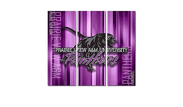 Victory Tailgate Prairie View A/&M PVAMU Panthers Canvas Wall Art Metal Design