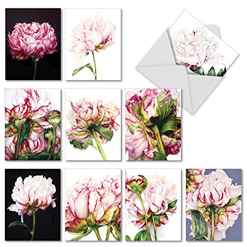 The Best Card Company - 10 Blank Flower Cards Boxed (4 x 5.12 Inch) - Assorted Floral Notecard Set - Precious Peonies AM6279OCB-B1x10