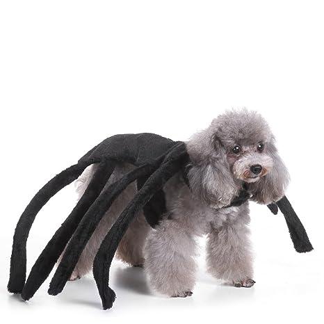 Labellevie Abrigo para Perros Mascotas Fiesta Trajes de Navidad Disfraces de Halloween Araña