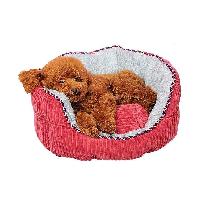 YAGEER gouwo Mascotas extraíbles y Lavables de la Perrera Que Xiong Keji Cuatro Estaciones litera del Gato pequeño Perro Grande colchón sofá camada de Gato ...
