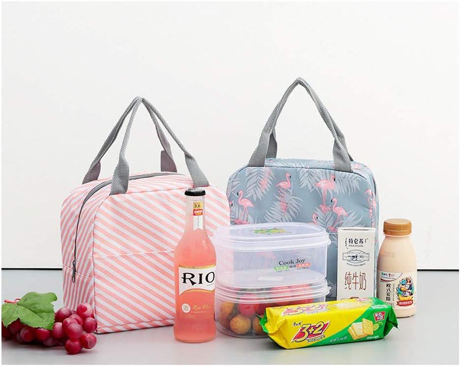 Bolsa Isotermica de Almuerzo Nevera para Alimentos Frutas Porta de Comida para Llevar al trabajo y Playa