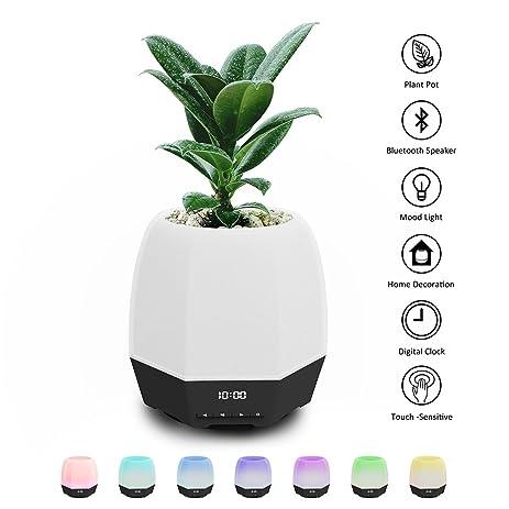Amazon.com : Bluetooth Speakers Flower Pot, Ozzie Music Flower ...