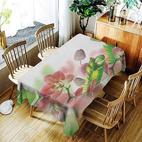 XXANS Washable Tablecloth,Tropical,Tropical Orchids Branch Stem Petal Leaf Bud Spring Blooming Flowers Print,Fashions Rectangular,W54x90L Peach and Green ()