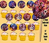 Coco Disney Movie Cupcake Picks Cake Toppers, Double-Sided, Miguel, Hector -12 pcs, dia de los muertos, day of the dead