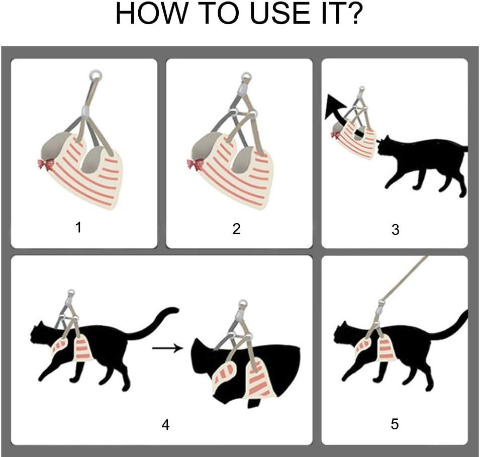 Smoro guinzaglio e guinzaglio per Cani Piccoli Imbracatura Gilet per Animali Domestici con Rete Bowknot Imbottita per Cani di Piccola Taglia Chihuahua Yorkies Pug