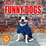 Best Wall Calendars 2017 Funny Dogs Wall Calendar with 210 Reminder Stickers, 12-Inch x 12-Inch