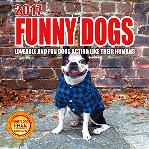 Best Wall Calendars 2017 Funny Dogs Wall Calendar with 210 Reminder Stickers, 12-Inch x 12-Inch (Funny Dog Pictures)