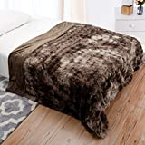 LANGRIA Luxury Super Soft Faux Fur Fleece Throw Blanket Cozy Warm Breathable Lightweight and Machine Washable Dyed Fabric for Winter - Decorative Furry Throw for Couch Bed (60x80, Twin Size Brown)