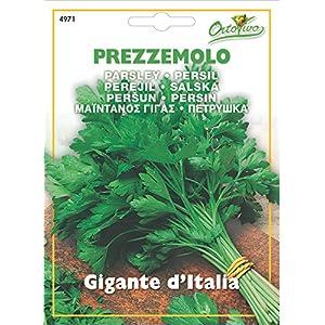 Hortus 43PRE4971 Maxi Busta Ortovivo Prezzemolo Gigante d'Italia, 12x0.2x16.5 cm 3 spesavip