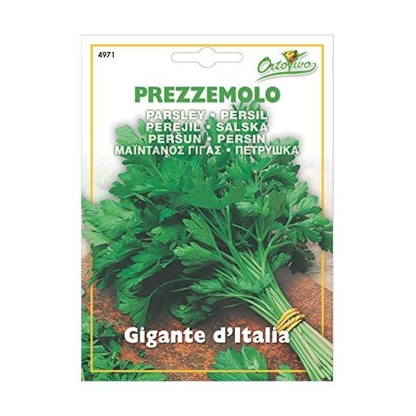 Hortus 43PRE4971 Maxi Busta Ortovivo Prezzemolo Gigante d'Italia, 12x0.2x16.5 cm 1 spesavip
