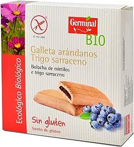 Galletas de trigo sarraceno con arándanos bio sin gluten