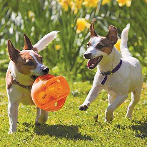KONG Medium Dog Toy Jumbler Ball Shape Tennis Ball Inside 2-in-1 Squeaker Colors Vary