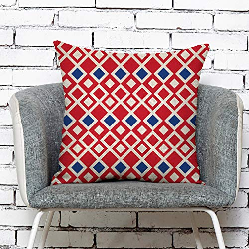 Bessyn Independence Day Throw Pillow Covers - Breathable Natural Linen Fabric Outdoor Decorative Texture Sofa Patio Furniture Cushion Cases Set for Garden Couch Home Bedroom Car Office Neck Rest (D)