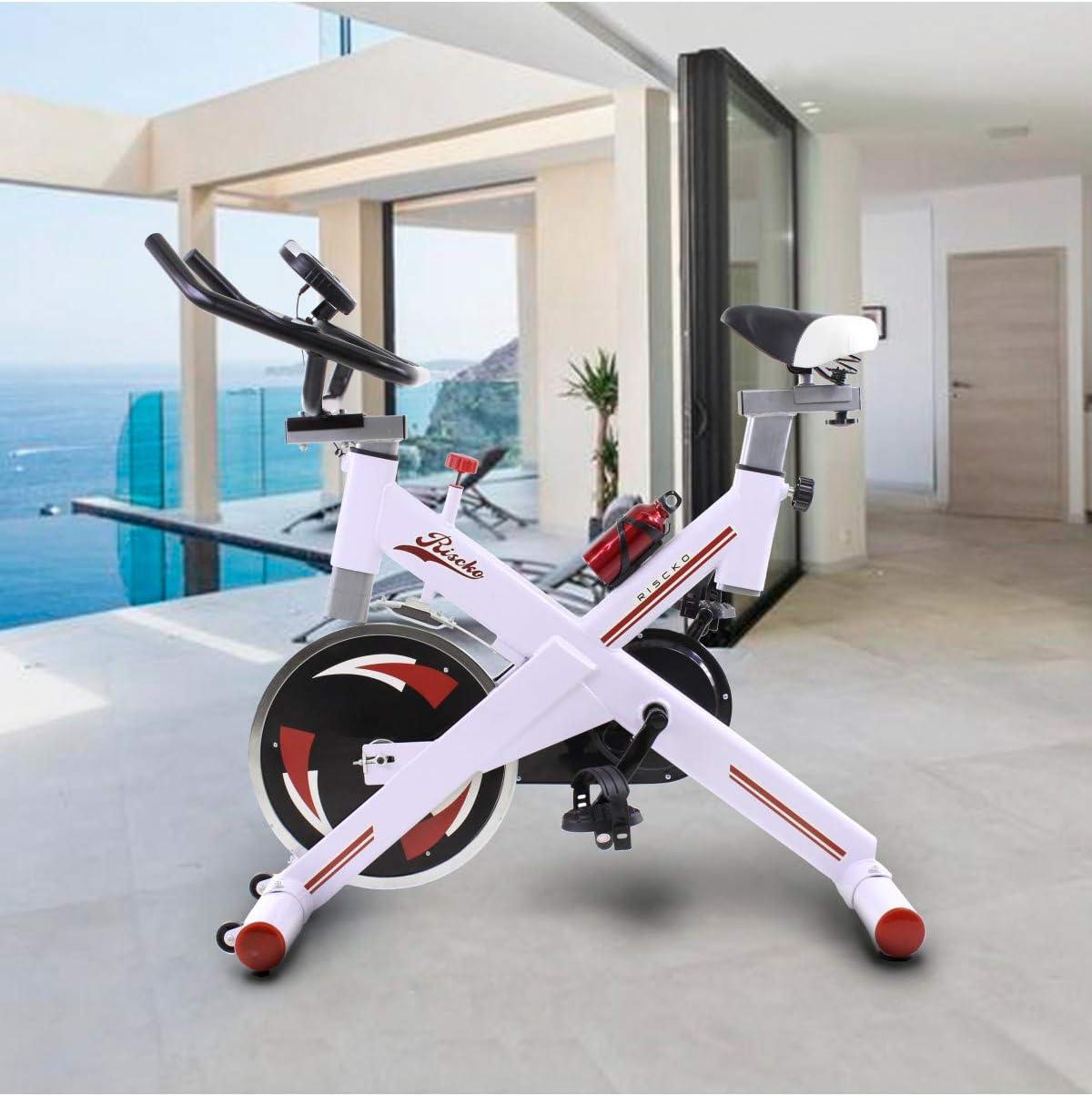Riscko Bicicleta Spinning Pro Ergonomic, Sistema Silent MAX, Disco ...