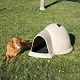 Petmate Indigo Dog House with Pad & Door Review and Comparison