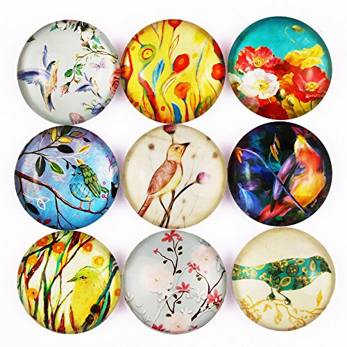 Pack-9 Flower Bird Refrigerator Magnets, Crystal Glass Fridge Magnets for Holiday Gift, Cosylove Magnets for Decorative Christmas, Bulletin Board, Home, Photos, Cabinets, Whiteboards (Flower and (Bird Magnet Set)