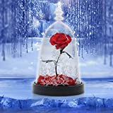 Rose Forever, Enchanted Rose, Red Rose Gift for Her with Colorful Led Light in Glass Dome on Wooden Base for Girls Wedding Anniversary Birthday as Home Decor (Gift Box Included )