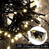 【 シャンパンゴールド 】【 長期保証 】 防水 イルミネーション LED 100球 クリスマスライト 暖白 ウォームホワイト 連結不可 USB電源 点灯パターン記憶機能付き (usb/シャンパンゴールド)