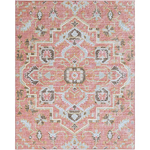 Germaine Pale Pink and Pale Blue Updated Traditional Area Rug 7'10
