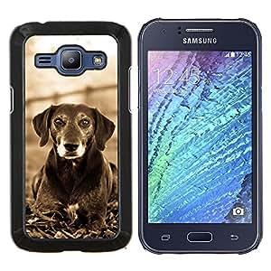 Mutt Negro Terrier Hound Dog Canine Blanca- Metal de aluminio y de plástico duro Caja del teléfono - Negro - Samsung Galaxy J1 / J100