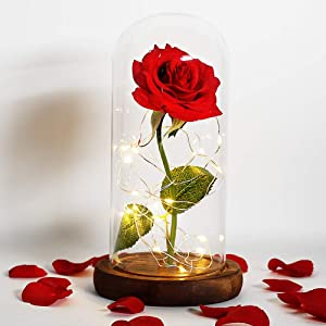 Beauty and The Beast Rose Kit, Red Silk Rose in Glass Dome on Wooden Base for Home Decor Holiday Party Wedding Anniversary (Brown)