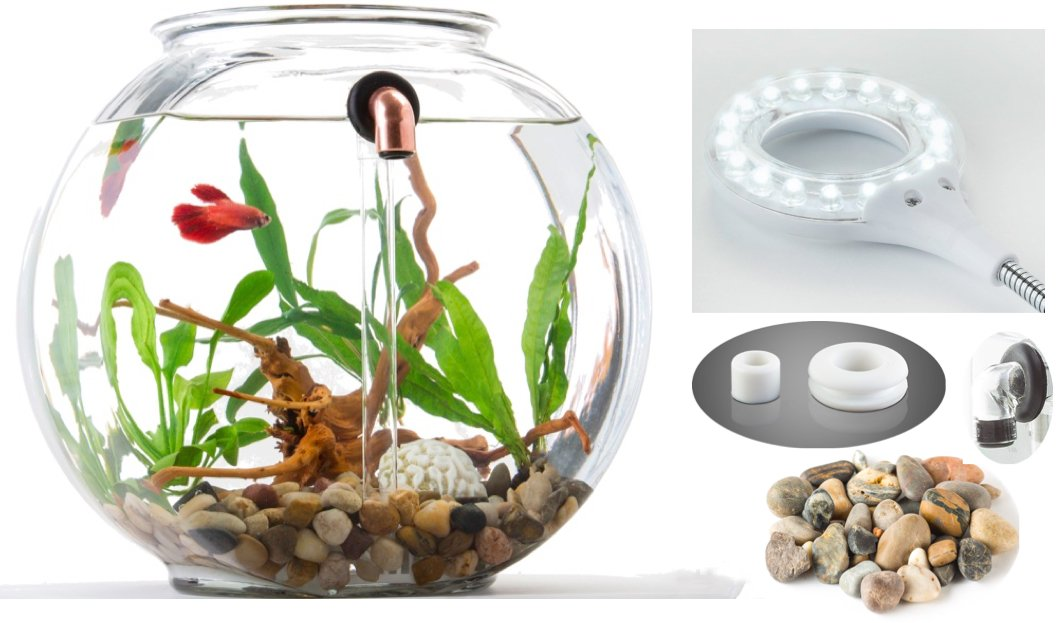 NoClean Aquariums: STARTER KIT - Eco-Friendly, Self-Cleaning, Glass Fishbowl - GravityFlow2