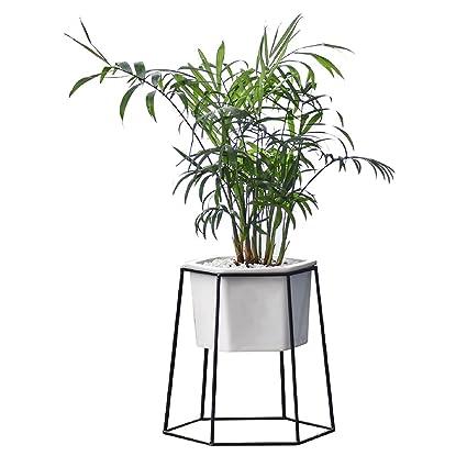 COMEBACK Planter Pots Indoor with Metal Iron Frame - Hexagonal ...
