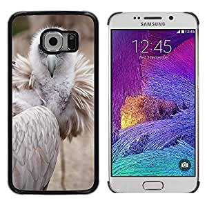 Hot Style Cell Phone PC Hard Case Cover // M00117334 Animal Beak Bird Feather Feathers // Samsung Galaxy S6 EDGE (Not Fits S6)