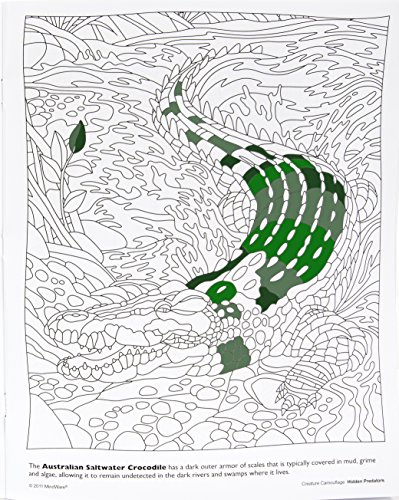 amazoncom mindware hidden predators creature camouflage coloring book 12 unique images with 2 templates teaches creativity and fosters imagination - Mindware Coloring Books