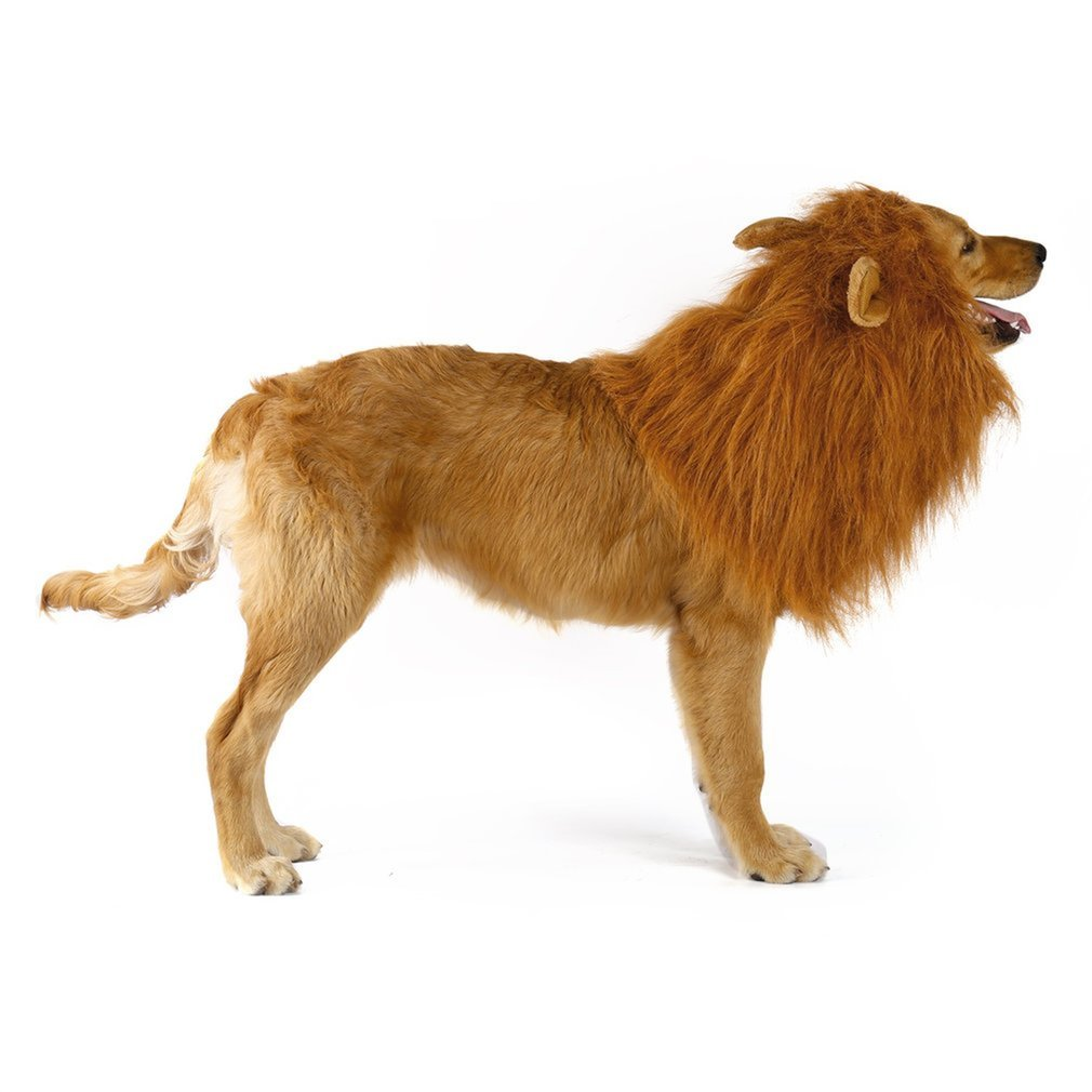 YOFUN Dog Lion Mane with Ear- Adjustable washable lion Mane for Dog - Lion Mane Wig For Medium to Large Size Dog — Hallowmas Costumes For Dog Come with Free Lion Tail