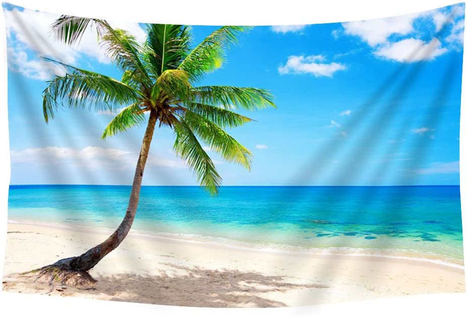 Pupbeamo Prints Palm Paradise Emerald Ocean Tropical Coast Blue Beach Sea Wall Tapestry Art For Home Decor Wall Hanging Tapestry 60x40 Inches Home Kitchen