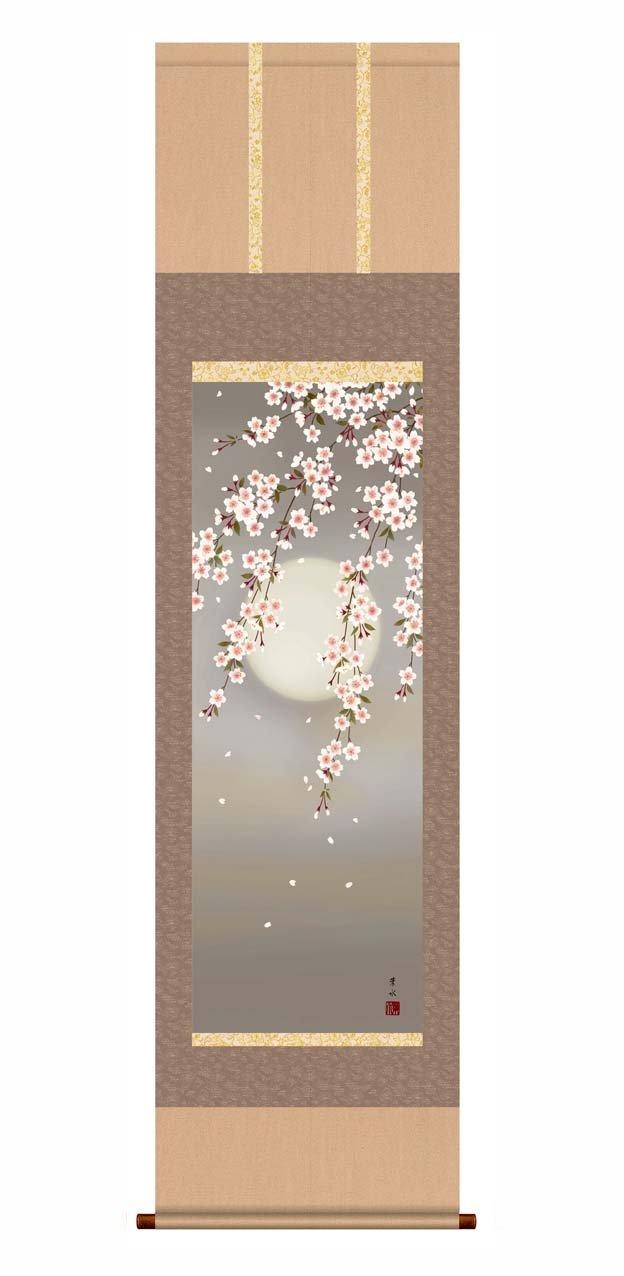 春爛漫の象徴『桜図』1 ■ 花鳥画(尺三)掛軸 (緒方葉水「夜桜」) B00BIYT64S緒方葉水「夜桜」