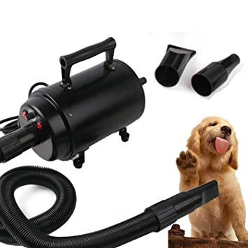 Forever Speed Secador de Pelo para Perros Gatos Mascotas Secador de Cabello Temperatura y Velocidad Ajustable Estándar Europeo (Negro): Amazon.es: Deportes ...