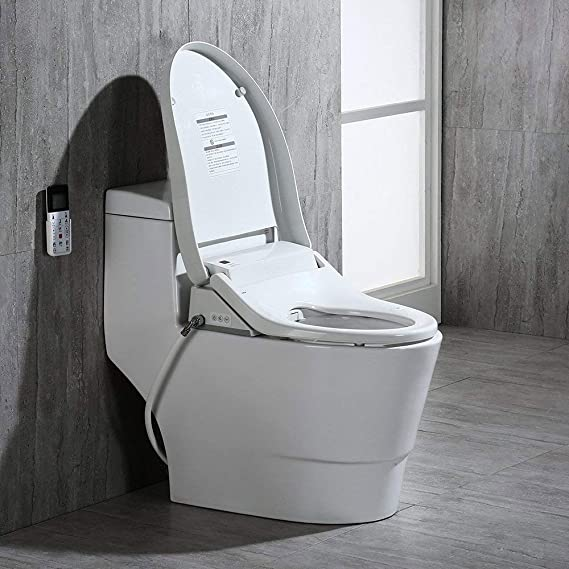 Incredible Woodbridgebath Woodbridge Luxury Elongated One Piece Toilet With Advanced Bidet Seat T 0008 Creativecarmelina Interior Chair Design Creativecarmelinacom