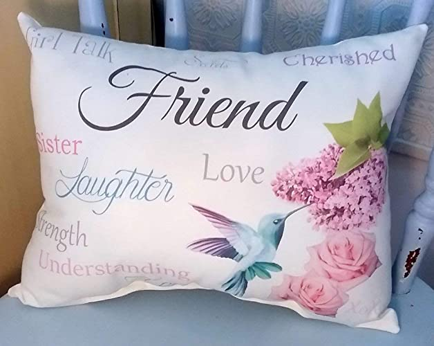 Amazon Sentimental Friend Gift Pillow With Hummingbird Roses