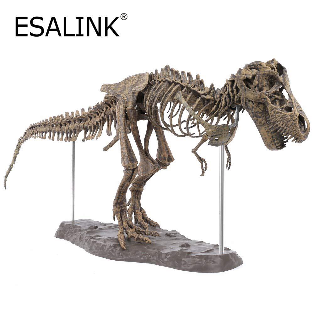 【メーカー包装済】 ESALINK Edu-Toys ソフトPVC 安全 3D 3D T-Rex スケルトンモデル B07KTZMTZJ ソフトPVC 非毒性 環境に優しい恐竜パズル シミュレーション玩具 B07KTZMTZJ, keiG BIKE SHOP:57e1b15a --- a0267596.xsph.ru