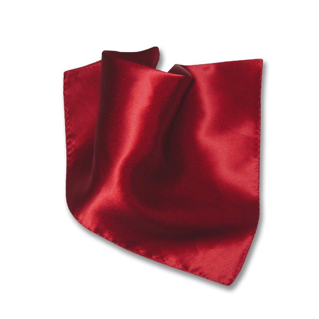 Biagio Mens Silk Dress Vest /& Necktie Solid Dark RED Color Neck Tie Set