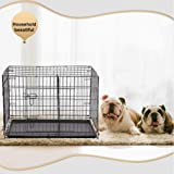 BestPet New Cat Dog cage Pet Kennel Folding Crate Wire Metal Cage W/Divider