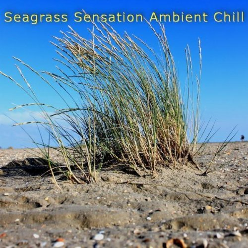 (Seagrass Seaside)