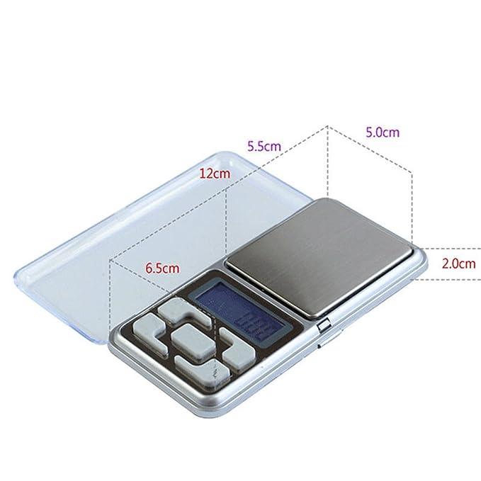 Digital Waage, pocket scale Feinwaage (500g/0.1): Amazon.de: Küche ...