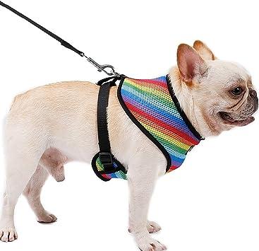 YQG Arnés para Perro de Color Arcoíris Resistente Arnés para ...