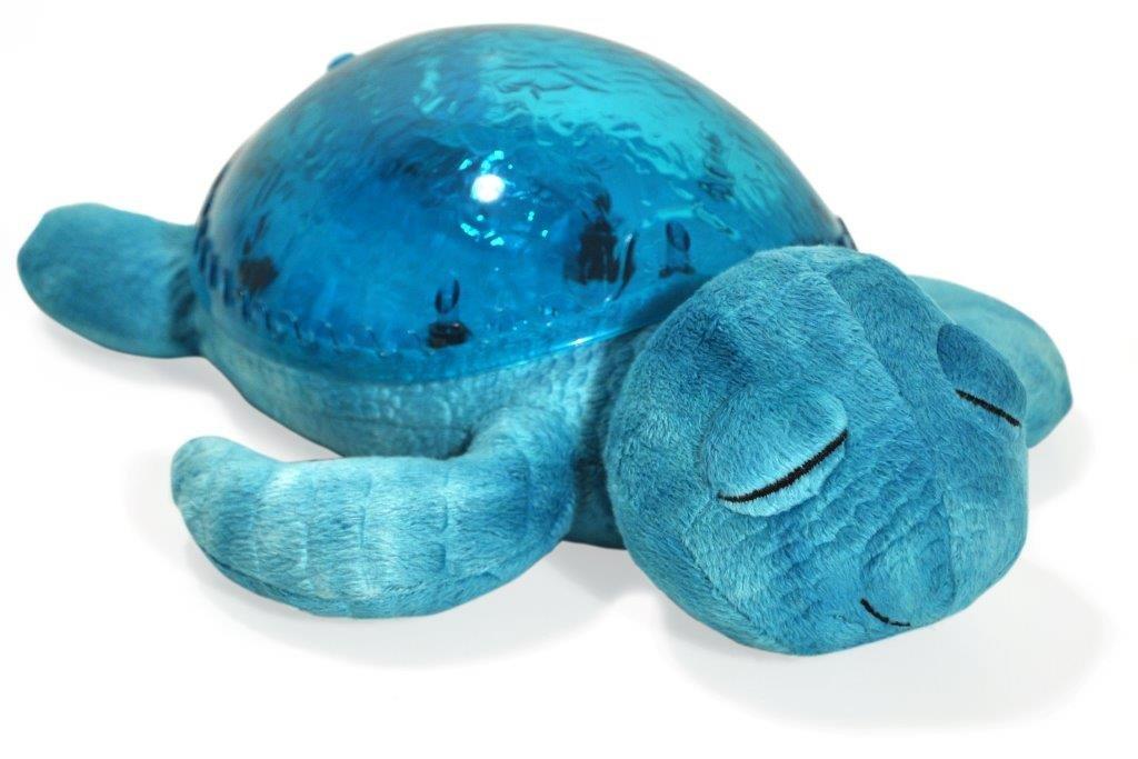 Cloud B Aqua Turtle (japan import)