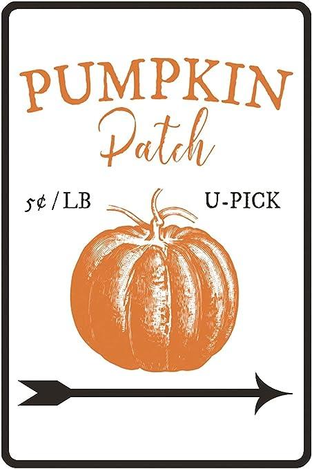 Pumpkin Patch  Farmhouse style  Rustic  Thanksgiving  Fall Decor  Halloween  Modern Farm Decor