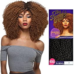 Outre Human Hair Blend Weave Premium Purple Pack 1 Pack Solution Big Beautiful Hair 3C-Whirly (DR2730)