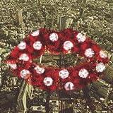 ガイガーカウンターカルチャー(初回限定盤)(DVD付)