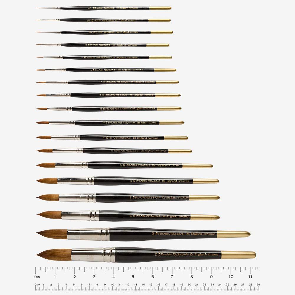 Pro Arte Prolene Round Synthetic Watercolour Brush Series 101 Size 3//0