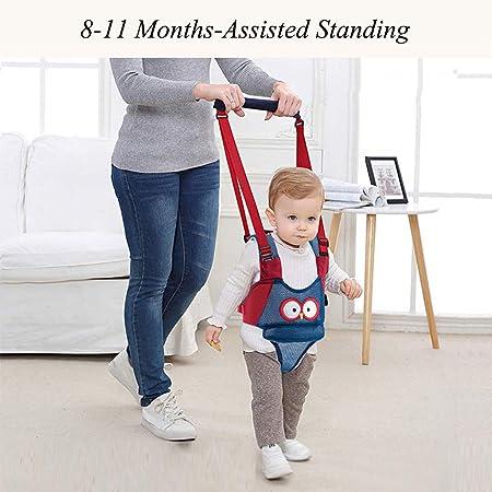 Baby Gehhilfe Lauflernhilfe f/ür Stehen Gehen Lernen Helfer Walker f/ür Kinder 8-24 Monthe Grau