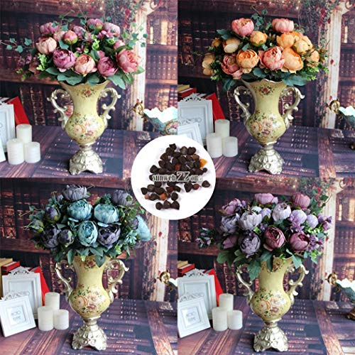 Portal Cool 10Pcs: New Nice Adorable Flower Fragrant Blooms Double Light Peony Seeds Rr6