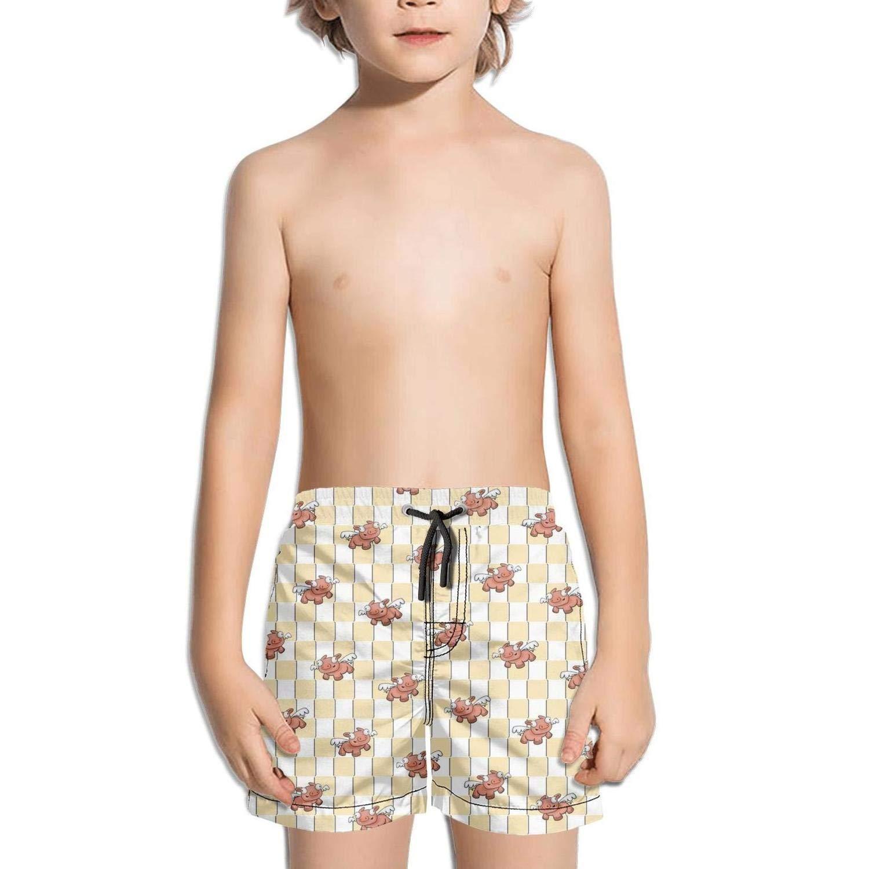 Etstk Flying Pig Kids Quick Dry Swim Trunks for Men